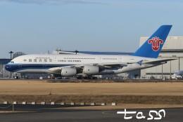 tassさんが、成田国際空港で撮影した中国南方航空 A380-841の航空フォト(飛行機 写真・画像)