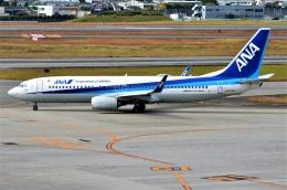 amagoさんが、伊丹空港で撮影した全日空 737-8ALの航空フォト(飛行機 写真・画像)