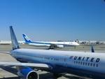 まーくんさんが、ジョン・F・ケネディ国際空港で撮影した全日空 777-381/ERの航空フォト(写真)