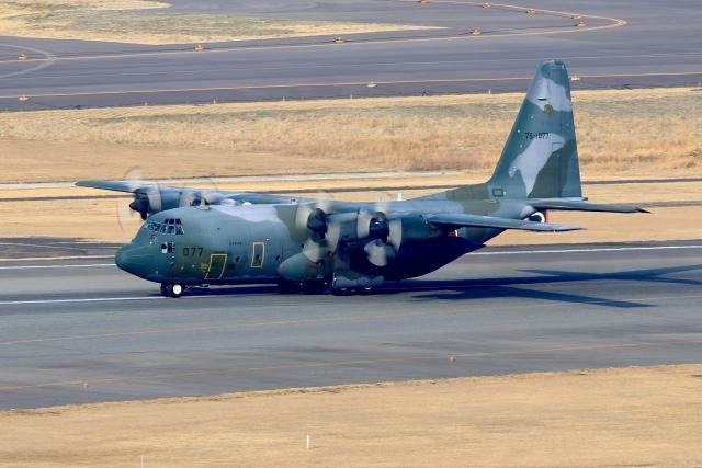aki241012さんが、福岡空港で撮影した航空自衛隊 C-130H Herculesの航空フォト(飛行機 写真・画像)