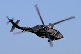 kaeru6006さんが、明野駐屯地で撮影した陸上自衛隊 UH-60JAの航空フォト(飛行機 写真・画像)