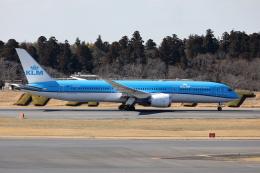 TAKA-Kさんが、成田国際空港で撮影したKLMオランダ航空 787-9の航空フォト(飛行機 写真・画像)