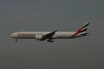 アイスコーヒーさんが、成田国際空港で撮影したエミレーツ航空 777-31H/ERの航空フォト(写真)