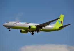 雲霧さんが、成田国際空港で撮影したジンエアー 737-8Q8の航空フォト(飛行機 写真・画像)