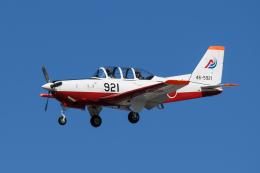 kuraykiさんが、岐阜基地で撮影した航空自衛隊 T-7の航空フォト(飛行機 写真・画像)
