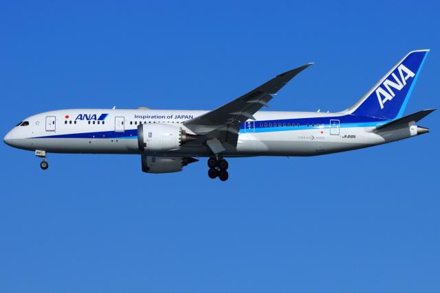 とらとらさんが、羽田空港で撮影した全日空 787-8 Dreamlinerの航空フォト(飛行機 写真・画像)