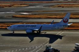 M.airphotoさんが、羽田空港で撮影した日本航空 737-846の航空フォト(飛行機 写真・画像)