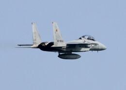 ビッグジョンソンさんが、築城基地で撮影した航空自衛隊 F-15DJ Eagleの航空フォト(飛行機 写真・画像)