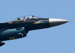 ビッグジョンソンさんが、築城基地で撮影した航空自衛隊 F-2Aの航空フォト(飛行機 写真・画像)