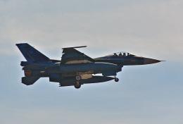 鈴鹿@風さんが、岐阜基地で撮影した航空自衛隊 F-2Aの航空フォト(飛行機 写真・画像)