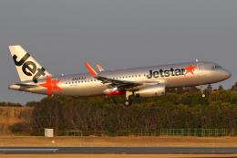 こだしさんが、成田国際空港で撮影したジェットスター・ジャパン A320-232の航空フォト(飛行機 写真・画像)