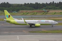 神宮寺ももさんが、成田国際空港で撮影したジンエアー 737-8SHの航空フォト(飛行機 写真・画像)
