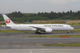 神宮寺ももさんが、成田国際空港で撮影した日本航空 787-9の航空フォト(飛行機 写真・画像)