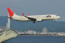 Deepさんが、関西国際空港で撮影した日本航空 737-846の航空フォト(飛行機 写真・画像)