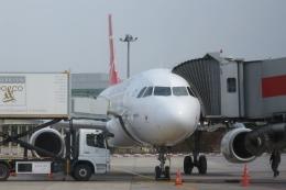 Hiro-hiroさんが、アタテュルク国際空港で撮影したターキッシュ・エアラインズ A320-232の航空フォト(飛行機 写真・画像)