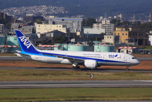 けいとパパさんが、伊丹空港で撮影した全日空 787-8 Dreamlinerの航空フォト(飛行機 写真・画像)