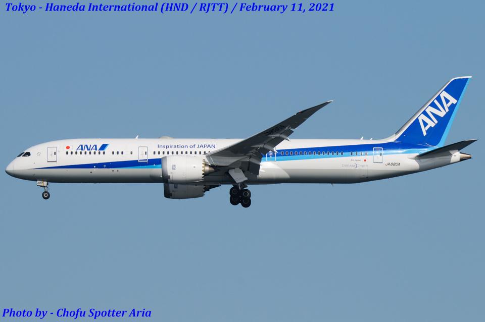 Chofu Spotter Ariaさんの全日空 Boeing 787-9 (JA880A) 航空フォト