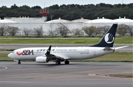 Rsaさんが、成田国際空港で撮影した山東航空 737-85Nの航空フォト(飛行機 写真・画像)