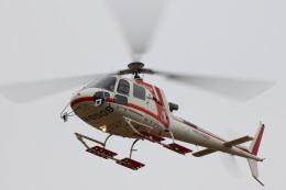 redarrowさんが、群馬ヘリポートで撮影した朝日航洋 AS350B3 Ecureuilの航空フォト(飛行機 写真・画像)