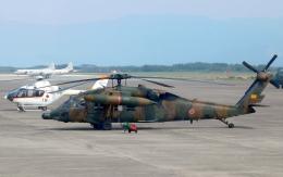 asuto_fさんが、鹿屋航空基地で撮影した陸上自衛隊 UH-60JAの航空フォト(飛行機 写真・画像)