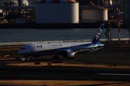 M.airphotoさんが、羽田空港で撮影した全日空 787-9の航空フォト(飛行機 写真・画像)