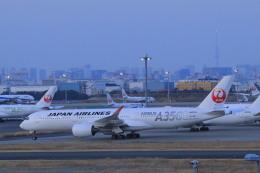 しかばねさんが、羽田空港で撮影した日本航空 A350-941の航空フォト(飛行機 写真・画像)