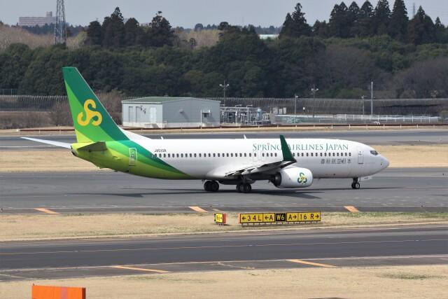 もぐ3さんが、成田国際空港で撮影した春秋航空日本 737-81Dの航空フォト(飛行機 写真・画像)