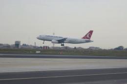 Hiro-hiroさんが、アタテュルク国際空港で撮影したターキッシュ・エアラインズ A320の航空フォト(飛行機 写真・画像)