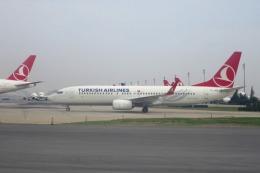 Hiro-hiroさんが、アタテュルク国際空港で撮影したターキッシュ・エアラインズ 737-8F2の航空フォト(飛行機 写真・画像)