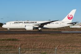 I.Kさんが、伊丹空港で撮影した日本航空 787-8 Dreamlinerの航空フォト(飛行機 写真・画像)