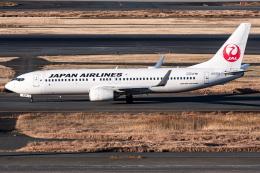 I.Kさんが、羽田空港で撮影した日本航空 737-846の航空フォト(飛行機 写真・画像)