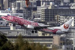 K.Sさんが、福岡空港で撮影した日本トランスオーシャン航空 737-8Q3の航空フォト(飛行機 写真・画像)
