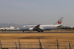 なみちゃんねるさんが、伊丹空港で撮影した日本航空 787-8 Dreamlinerの航空フォト(飛行機 写真・画像)