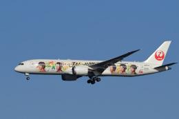 飛行機ゆうちゃんさんが、羽田空港で撮影した日本航空 787-9の航空フォト(飛行機 写真・画像)