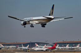 让开我先飞さんが、北京首都国際空港で撮影したシンガポール航空 777-312/ERの航空フォト(飛行機 写真・画像)