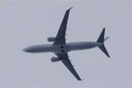 jutenLCFさんが、中部国際空港で撮影した日本航空 737-846の航空フォト(飛行機 写真・画像)