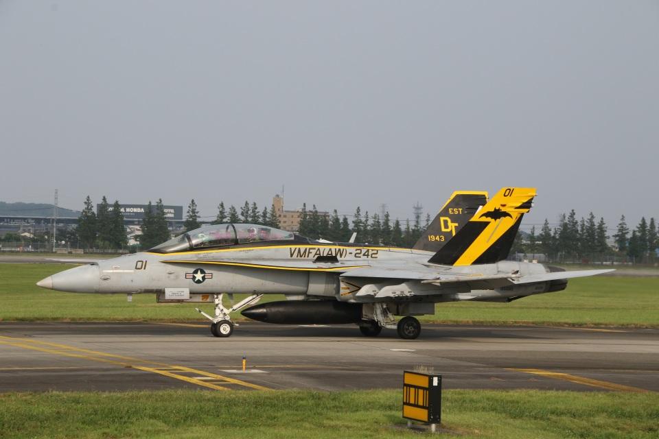 ショウさんのアメリカ海兵隊 McDonnell Douglas F/A-18 Hornet (165685) 航空フォト