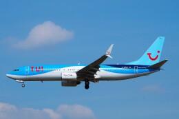 ちっとろむさんが、フランクフルト国際空港で撮影したトゥイフライ 737-8BKの航空フォト(飛行機 写真・画像)