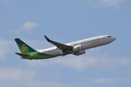 もぐ3さんが、成田国際空港で撮影した春秋航空日本 737-8ALの航空フォト(飛行機 写真・画像)
