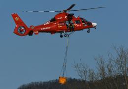 チャーリーマイクさんが、足利市で撮影した宮城県防災航空隊 AS365N3 Dauphin 2の航空フォト(飛行機 写真・画像)