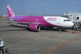 職業旅人さんが、仙台空港で撮影したピーチ A320-251Nの航空フォト(飛行機 写真・画像)