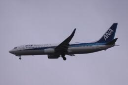 Mr.boneさんが、福岡空港で撮影した全日空 737-881の航空フォト(飛行機 写真・画像)