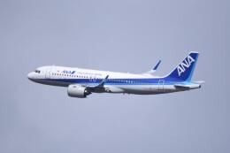 kumagorouさんが、仙台空港で撮影した全日空 A320-271Nの航空フォト(飛行機 写真・画像)