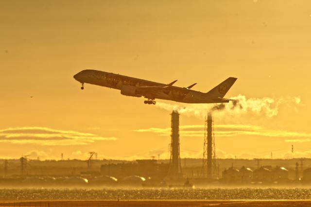 監督さんが、羽田空港で撮影した日本航空 A350-941の航空フォト(飛行機 写真・画像)