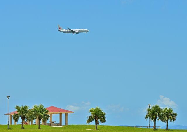 監督さんが、那覇空港で撮影した日本トランスオーシャン航空 737-8Q3の航空フォト(飛行機 写真・画像)