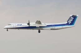 kunimi5007さんが、仙台空港で撮影したANAウイングス DHC-8-402Q Dash 8の航空フォト(飛行機 写真・画像)