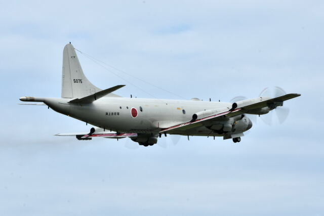 ワイエスさんが、鹿屋航空基地で撮影した海上自衛隊 P-3Cの航空フォト(飛行機 写真・画像)