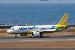 WAiRさんが、中部国際空港で撮影したセブパシフィック航空 A320-271Nの航空フォト(飛行機 写真・画像)