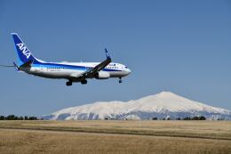 だだちゃ豆さんが、庄内空港で撮影した全日空 737-8ALの航空フォト(飛行機 写真・画像)