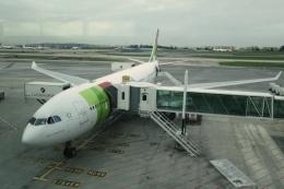 Hiro-hiroさんが、リスボン・ウンベルト・デルガード空港で撮影したTAPポルトガル航空 A330-223の航空フォト(飛行機 写真・画像)